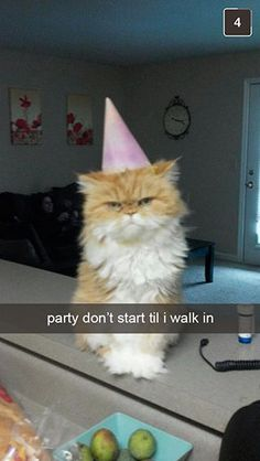 Top-23-Funny-Birthday-Quotes-for-Friends-funniest