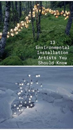 Artistic Installation, Land Art, Contemporary Artists, Amazing Art, Illustration Art, Environment, Collages, Nature, Paintings