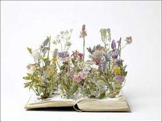 book-art-4.jpg (500×375)