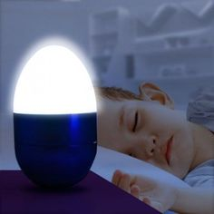 Decorative LED Egg
