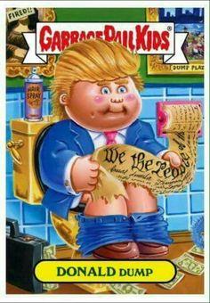 Donald dump                                                                                                                                                                                 More