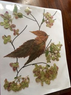 15 Dried Flower Crafts that Make Great Fall Decor Dried leaf and flower bird art Leaf Crafts, Flower Crafts, Bird Crafts, Decor Crafts, Art Floral, Dry Leaf Art, Fall Arts And Crafts, Leaf Animals, Fall Art Projects