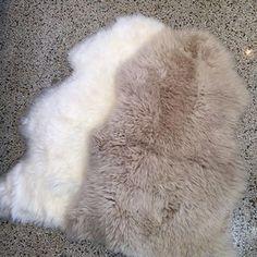 Restocked in sheepskin rugs. $115 #talorton #home #accessories #intheshopnow #sheepskin #rugs #interiors #homedecor #ivory #soft