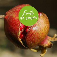 Focus fruits et légumes de saison : la grenade.La grenade est peu calorique, il faut un certain temps pour la manger de ce fait la sensation de satiété en fin de repas a donc le temps de se mettre en place. Ce qui en fait un allié minceur idéal. De plus, c'est un des fruits contenant le plus de principes anti-oxydants. Ainsi, consommer du jus de grenade pourrait non seulement redonner de la souplesse et une belle teinte à la peau mais aussi prévenir ou diminuer l'impact de certains facteurs…