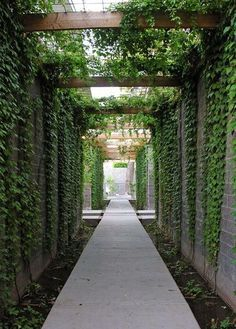 entry arbor - Google Search More