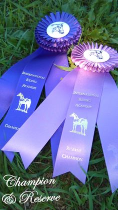 Reserve Champion and Champion rosettes for Sport, Stock and Show (sidetabs will be added later saying which) Awarded once per horse and rider combination based upon tests ridden and scores.