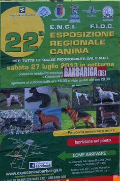 esposizione regionale canina a Barbariga http://www.panesalamina.com/2013/14477-esposizione-regionale-canina-a-barbariga.html