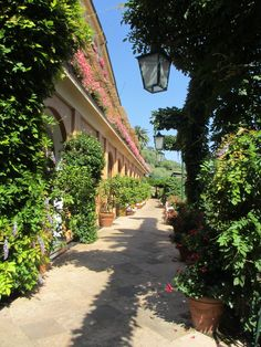 A shady walkway at the Splendido Hotel in Portofino, Italy.