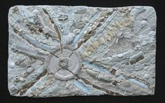 """ Quintessence""           (Sold) by Kath Jones, via Flickr"