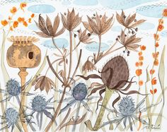 Meadow with poppy and astrantia, original water drawing, by Angie Lewin.