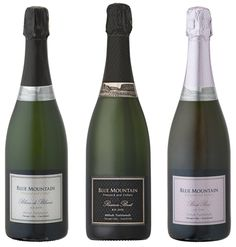 Okanagan Falls, BC | Mark your calendars, because Blue Mountain Vineyard & Cellars' 2009 Brut Rose R.D. ($32.90), 2005 Reserve Brut R.D. ($39.90), and 2006 Blanc de Blancs R.D. ($39.90) will be released on November 5th, 2013. All three wines were disgorged in March of this year. Orders should be placed through the winery's website here. Sparkling Wine, Blue Mountain, Wines, Vineyard, November, Sparkle, Events, Website, Bottle