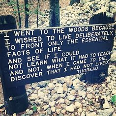 """I went to the wood because I wished to live deliberately, to front only the essential facts of life.  And see if I could not learn what it had to teach, and not, when I came to die, discover that I had not live."" -Thoreau"
