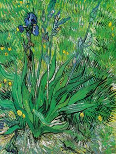 Vincent Van Gogh Iris 1000 Piece Puzzle: Claude Monet was a founder of French impressionist painting, and the most consistent and prolific pra Impressionism, Fine Art, Art Van, Dutch Artists, Vincent, Van Gogh Irises, Painting Reproductions, Artwork, Post Impressionists