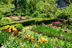 ⚘ Mon jardin en permaculture