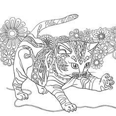 Um Reino de Cores. Livro de Colorir Antiestresse - Livros na Amazon.com.br