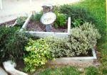 herb garden...pretty