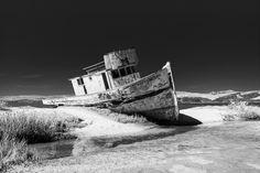 Point Reyes National Seashore - Black and White