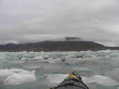Idée #41 - Rencontrer les phoques de l'océan Arctique #phoque #polenord #svalbard #arctique #iceberg #aventure