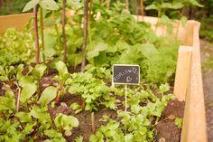 tuulinenpaiva.fi The raised garden beds