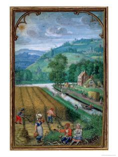 Image of september, harvesting wheat, from a book of hours, by simon bening. flanders, century by V&A Images Medieval Life, Medieval Art, Illuminated Letters, Illuminated Manuscript, Medieval Paintings, Book Of Hours, Medieval Manuscript, Art History, European History