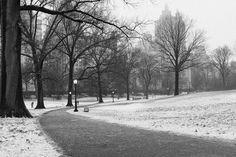 central park snow | Tumblr