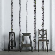projectdecor:  This Birch Wall Decal will  The tree wall decals are 9ft tall to accommodate tall ceilings or you can slant them in standard height ceilings. These modern wall decals are easy to apply and will not damage your walls. Included: (5) 9 feet Birch Tree Decals Widths range from 2-5 inches
