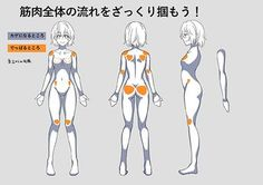 Body Reference Drawing, Body Drawing, Anatomy Drawing, Art Reference Poses, Manga Drawing, Character Model Sheet, Character Modeling, Perspective Drawing Lessons, Modelos 3d