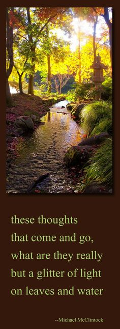 Tanka poem: these thoughts-- by Michael McClintock. Photo by Karen McClintock.