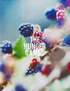 Find images and videos about gif, the hunger games and mockingjay on We Heart It - the app to get lost in what you love. Hunger Games 2, Hunger Games Catching Fire, Hunger Games Trilogy, Juegos Del Ambre, Living Under A Rock, If I Stay, Mockingjay, The Girl Who, Music Bands