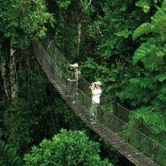 Puerto Maldonado: Inkaterra Reserva Amazónica program   Coltur