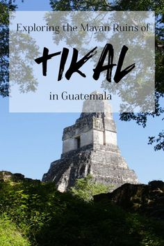 Exploring the Mayan Ruins of Tikal in Guatemala   brittanymthiessen.com