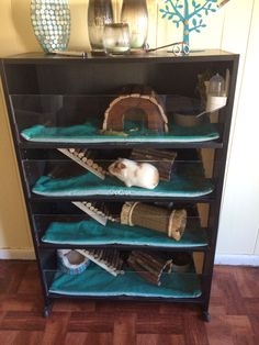 This is the Guinea pig habitat I made from a bookshelf. Cut a corner out of the shelves to make an opening for the ramp. Used plexiglas for the front. Made homemade fleece liners using reusable washable bed liners, fleece, and iron on fabric adhesive.