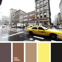 Color Palette #2251