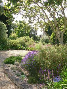 Beth Chatto Garden via Flickr