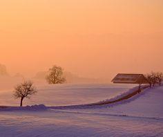 orange winter morning