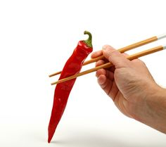 Love hot Asian food and spicy cuisine. Man Hahn holding red hot chili pepper with chopsticks over white background Asian Food Chinese Food Chopsticks Close-up Color Concept Cuisine Eating Food Healthy Eating Holding Hot Human Hand Metaphor Nutrition One Man Only Pepper Personal Perspective Red Red Chili Pepper Spicy Thai Food Vegetable White Background