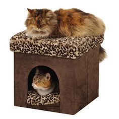 Cat Beds - Doggalicious.com  Shop for Rhinestone Tees, hoodies, tanks, and accessories for your pets.