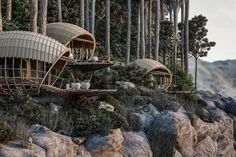 Wooden Architecture, Organic Architecture, Architecture Design, Glass Fit, Cabin In The Woods, Red Dot Design, A Frame Cabin, Forest Floor, Organic Living