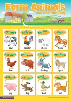 Farm Animals and what they say Wall Chart. Ideal for Bedrooms & Playrooms. Have great fun making the animal noises!