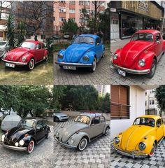 Beetle Car, Chevy Trucks, Volkswagen, Vehicles, Cars, Car, Vehicle, Tools