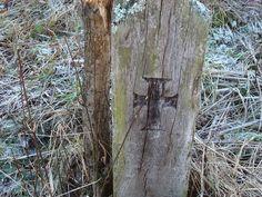 RO SJ Sanmihaiu Almasului 16 - Biserica de lemn din Sânmihaiu Almașului…