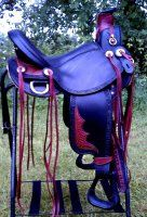 Arizona is not the place for a black saddle but if it were.......This 2 tone Cascade Wade would be mine!
