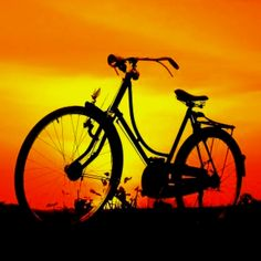 Cycle through the sunset ❦http://PhilosBooks.com❦