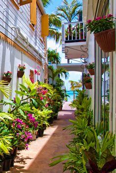 Saint Maarten, The Netherlands Antilles.  A beautiful island which is half Dutch and half  French.  ASPEN CREEK TRAVEL - karen@aspencreektravel.com (by candisfl)