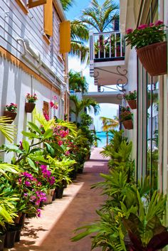 Saint Maarten, The Netherlands Antilles.  A beautiful island which is half Dutch and half  French.  ASPEN CREEK TRAVEL - karen@aspencreektravel.com (by candisfl)
