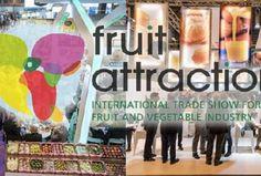 Fruit Attraction – l'evento chiave dell'ortofrutta in Spagna – si terrà a Madrid dal 18 al 20 ottobre. Le imprese italiane presenti saranno diverse (ben 114), ma la...
