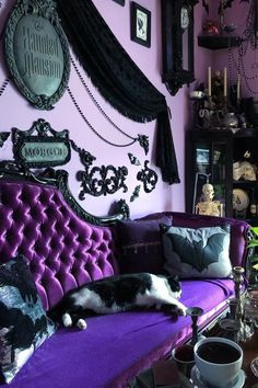 Cat in the Bat room. Mr Meow's room of choice to sloth in is the Purple Parlor. He's a big healthy boy resting all day so he can roam all… Gothic Living Rooms, Gothic Room, Gothic House, Living Room Decor, Bedroom Decor, Victorian Gothic Decor, Goth Home Decor, Hippie Home Decor, Gypsy Decor