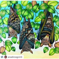 Morcegos em família! #Repost @anadircegcinti ・・・ #fabercastell…