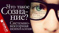 Что такое сознание? Системно-векторная психология Юрия Бурлана