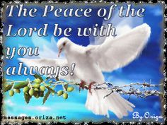 images of peace | Love Prayers, Blessings, Messages, Love Words, Prayers, Poems ...